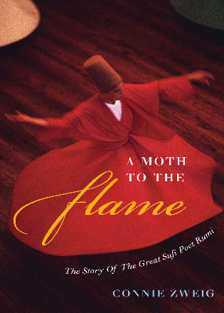 Cover image for the book A Moth to the Flame: The Story of the Great Sufi Poet Rumi