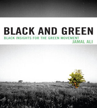 Cover image for the book Black and Green: Black Insights for the Green Movement
