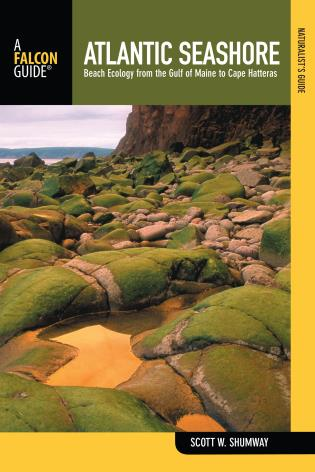 Cover image for the book Naturalist's Guide to the Atlantic Seashore: Beach Ecology From The Gulf Of Maine To Cape Hatteras, First Edition