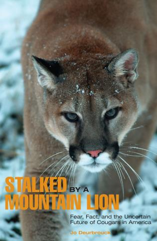 Cover image for the book Stalked by a Mountain Lion: Fear, Fact, And The Uncertain Future Of Cougars In America, First Edition