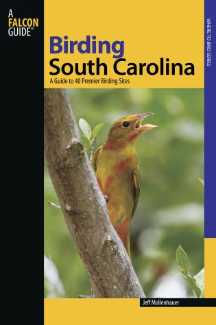 Cover image for the book Birding South Carolina: A Guide To 40 Premier Birding Sites, First Edition