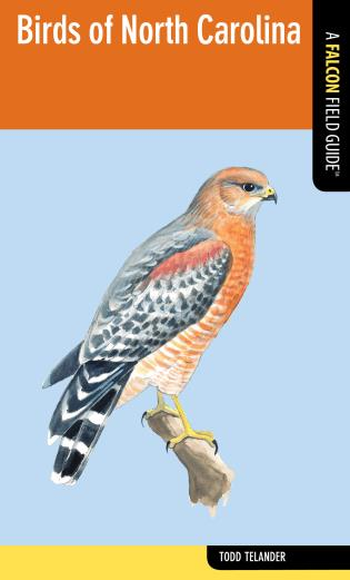 Cover image for the book Birds of North Carolina
