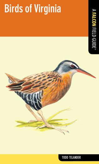 Cover image for the book Birds of Virginia