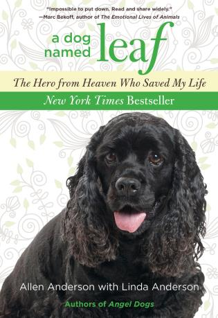 Cover image for the book Dog Named Leaf: The Hero From Heaven Who Saved My Life