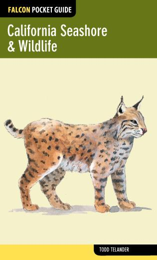 Cover image for the book California Seashore & Wildlife, First Edition