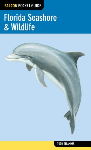 Cover image for the book Florida Seashore & Wildlife, First Edition