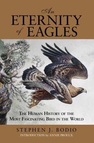 Cover image for the book Eternity of Eagles: The Human History of the Most Fascinating Bird in the World