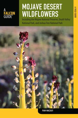 Cover image for the book Mojave Desert Wildflowers: A Field Guide toWildflowers, Trees, and Shrubs of the Mojave Desert, Including the Mojave National Preserve, Death Valley National Park, and Joshua Tree National Park, Second Edition