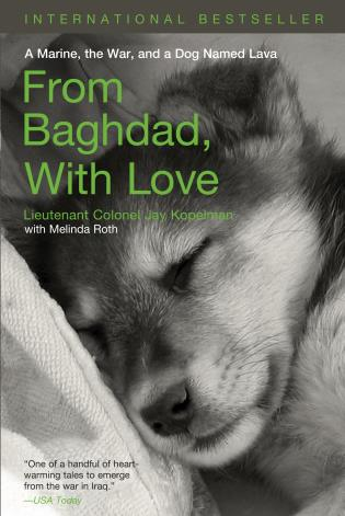 Cover image for the book From Baghdad with Love: A Marine, the War, and a Dog Named Lava