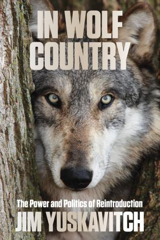 Cover image for the book In Wolf Country: The Power and Politics of Reintroduction, 1st Edition