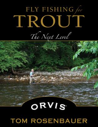 Cover image for the book Fly Fishing for Trout: The Next Level