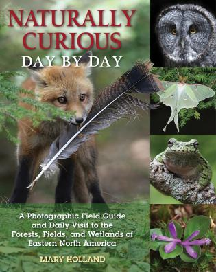 Cover image for the book Naturally Curious Day by Day: A Photographic Field Guide and Daily Visit to the Forests, Fields, and Wetlands of Eastern North America