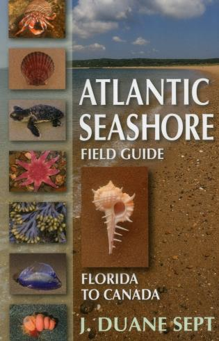 Cover image for the book Atlantic Seashore Field Guide: Florida to Canada