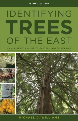 Cover image for the book Identifying Trees of the East: An All-Season Guide to Eastern North America, Second Edition