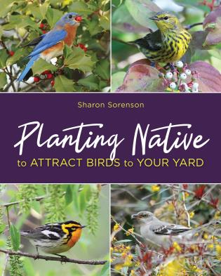 Cover image for the book Planting Native to Attract Birds to Your Yard