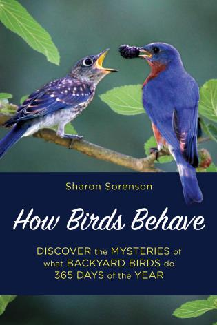 Cover image for the book How Birds Behave: Discover the Mysteries of What Backyard Birds Do 365 Days of the Year