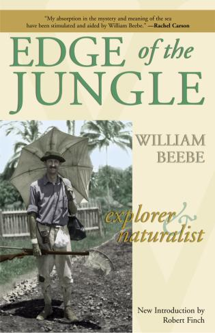 Cover image for the book Edge of the Jungle