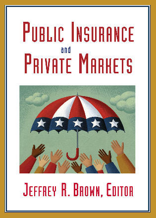 Cover image for the book Public Insurance and Private Markets