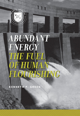 Cover image for the book Abundant Energy: The Fuel of Human Flourishing