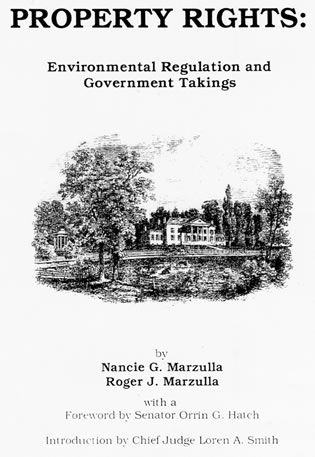 Cover image for the book Property Rights: Understanding Government Takings and Environmental Regulation