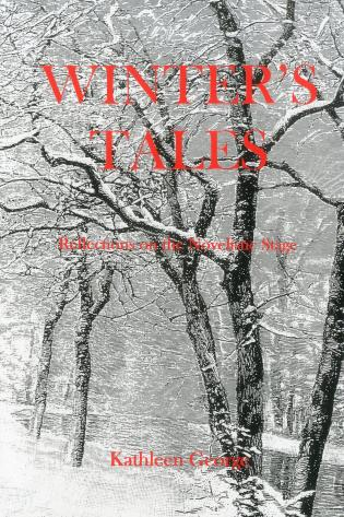 Cover image for the book Winter'S Tales: Reflections On The Novelistic Stage