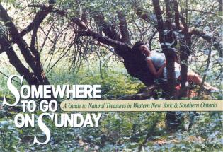 Cover image for the book Somewhere to Go on Sunday
