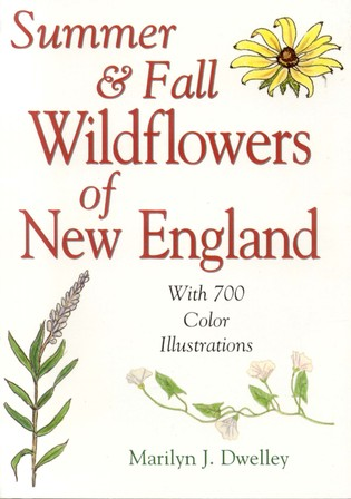 Cover image for the book Summer & Fall Wildflowers of New England
