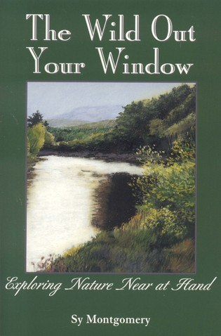 Cover image for the book The Wild Out Your Window