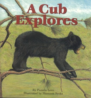 Cover image for the book A Cub Explores