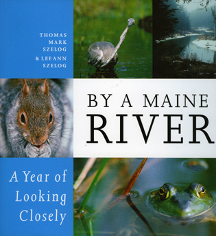 Cover image for the book By a Maine River: A Year of Looking Closely