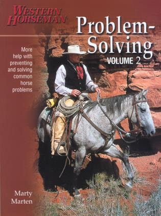Cover image for the book Problem-Solving, Volume 2, Revised Edition