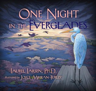 Cover image for the book One Night in the Everglades