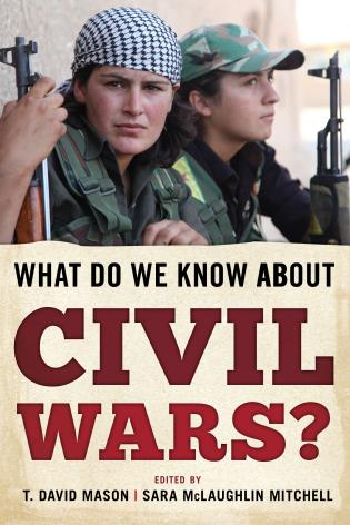 Cover image for the book What Do We Know about Civil Wars?