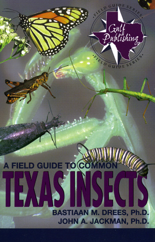 Cover image for the book A Field Guide to Common Texas Insects
