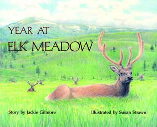 Cover image for the book Year at Elk Meadow