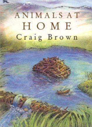 Cover image for the book Animals at Home