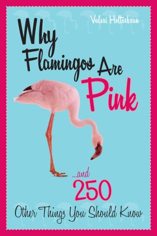 Cover image for the book Why Flamingos Are Pink: ...and 250 Other Things You Should Know