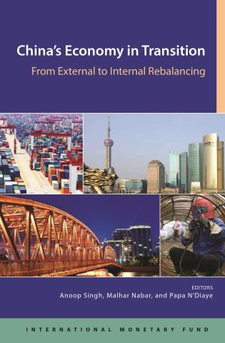 Cover image for the book China's Economy In Transition: From External To Domestic Re-Balancing