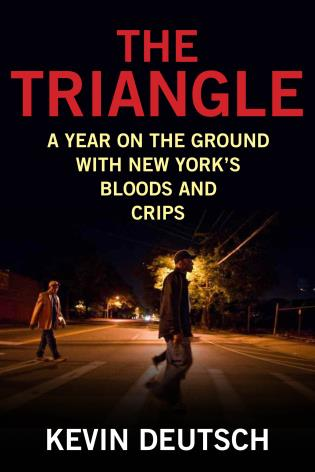 Cover image for the book The Triangle: A Year on the Ground with New York's Bloods and Crips