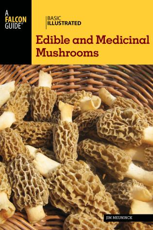 Cover image for the book Basic Illustrated Edible and Medicinal Mushrooms