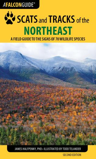 Cover image for the book Scats and Tracks of the Northeast: A Field Guide to the Signs of 70 Wildlife Species, Second Edition
