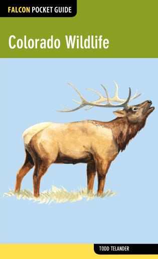 Cover image for the book Colorado Wildlife, First Edition