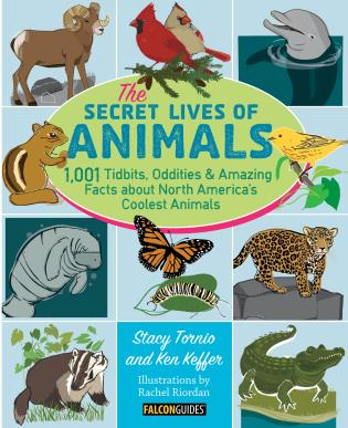 Cover image for the book The Secret Lives of Animals: 1,001 Tidbits, Oddities, and Amazing Facts about North America's Coolest Animals