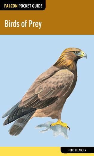 Cover image for the book Birds of Prey, First Edition