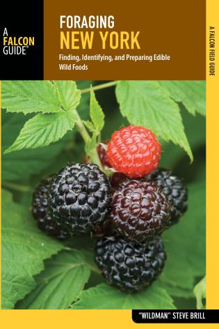Cover image for the book Foraging New York: Finding, Identifying, and Preparing Edible Wild Foods