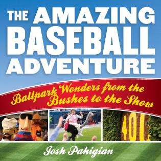 Cover image for the book The Amazing Baseball Adventure: Ballpark Wonders from the Bushes to the Show