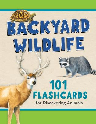 Cover image for the book Backyard Wildlife: 101 Flashcards for Discovering Animals