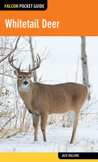 Cover image for the book Whitetail Deer