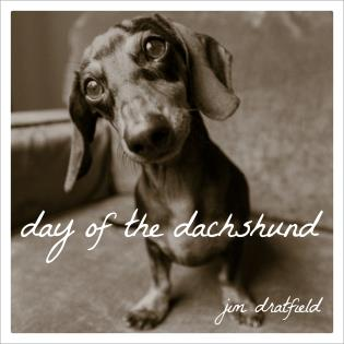 Cover image for the book Day of the Dachshund