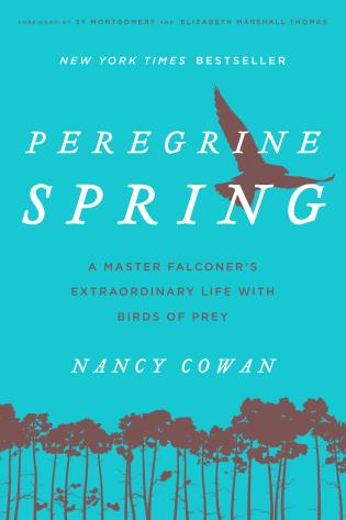 Cover image for the book Peregrine Spring: A Master Falconer's Extraordinary Life with Birds of Prey